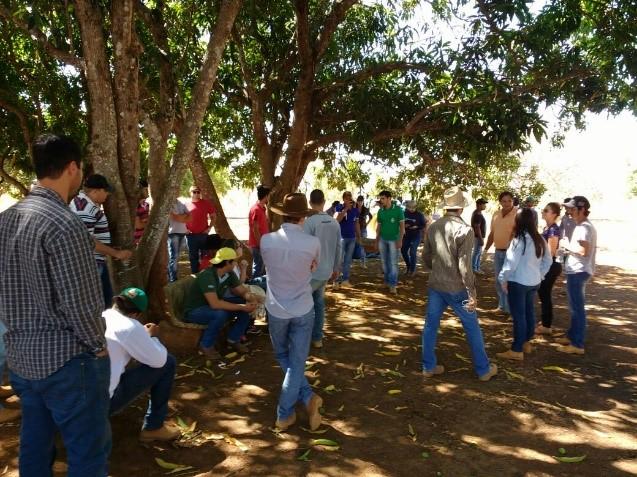 aula-pratica-gestao-ambiental-e-fitotecnia-v-feijao-e-soja_23-de-agosto_foto-1