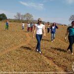 Acadêmicos do curso de Pedagogia visitam assentamento
